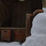 Der Winter, die arme Sau