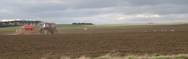Landwirtschaft in Schottland