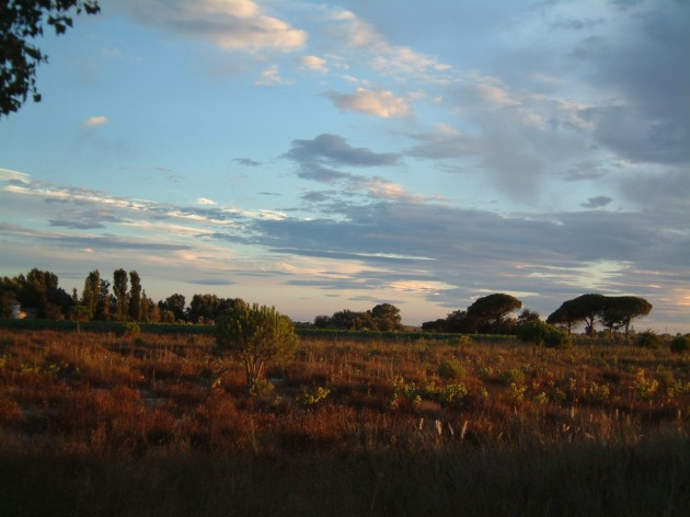 Landschaft in der Garonne