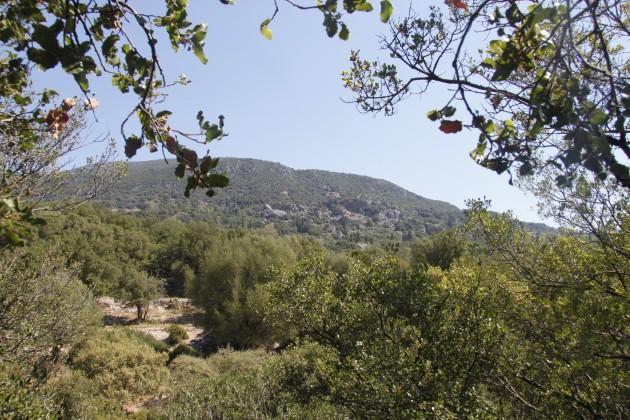 Blick über die Landschaft am Mühlenwandeweg südöstlich von Grizata