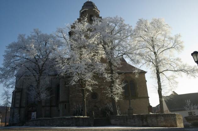 Die vereisten Linden vor der Kirche